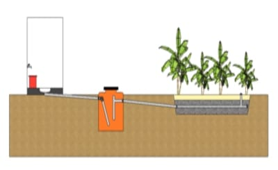 Virtual sustainability Journey build the first 500 Safe Water Gardens